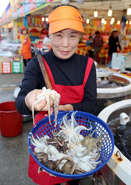 '제10회 몽산포항 주꾸미&수산물 축제'가 오는 20일부터 5월 6일까지 남면 몽산포항 일원에서 개최된다. (태안군 제공/ 굿모닝충청=김갑수 기자)